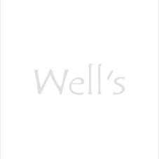 【6月5日まで】ウェルズ創業祭16thキャンペーン!